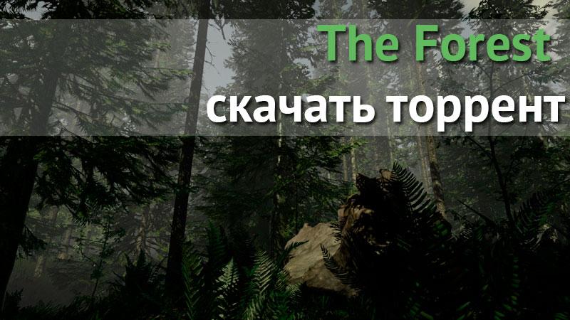The forest 1. 08 (полная версия) скачать торрент | game-mod. Ru все.
